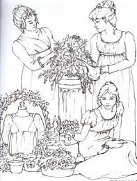 Sense and Sensibility - Elegant Ladies Closet