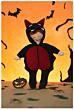 Knippie 0516 - 38 Lotte en Luuk Halloween
